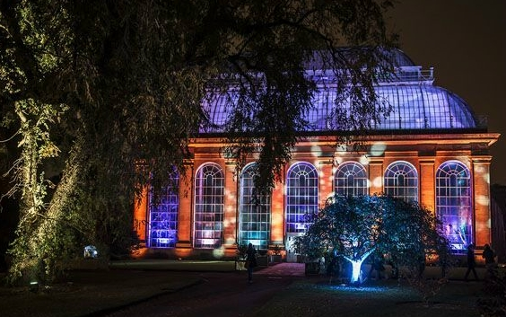 Botanic Lights Oct 13 – Nov 6
